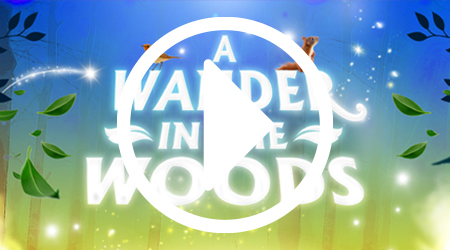 A Wander In The Woods Video