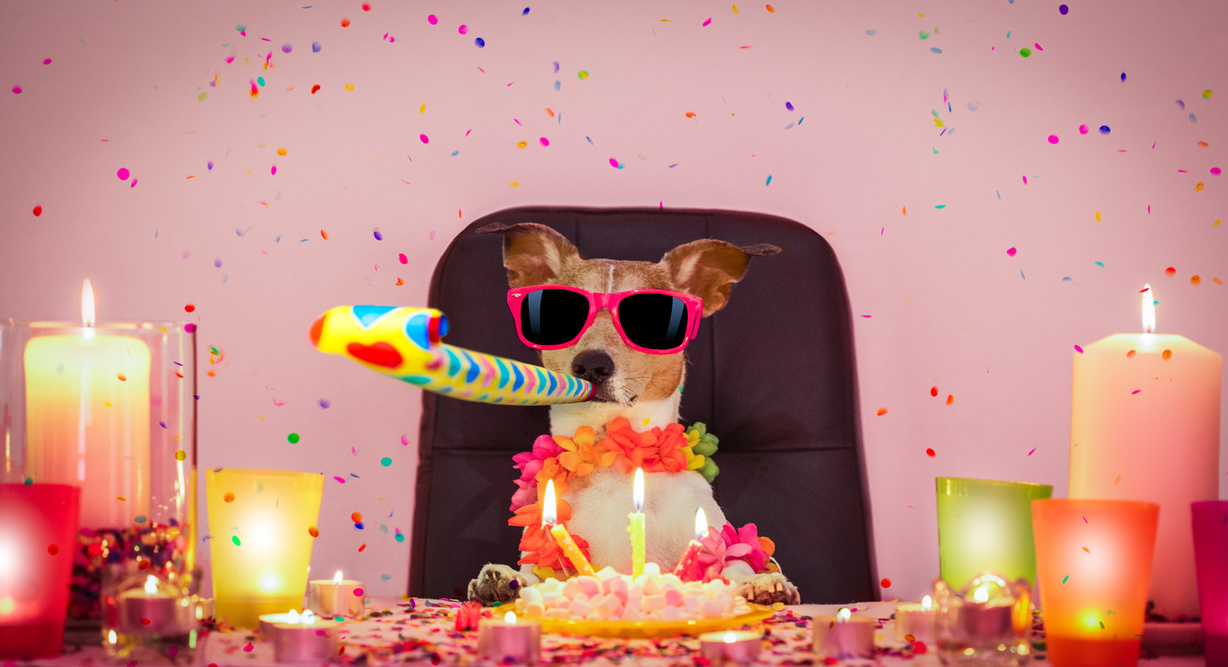 We're celebrating our 30th birthday, but we need your help! Header Image