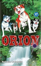 Orion 17