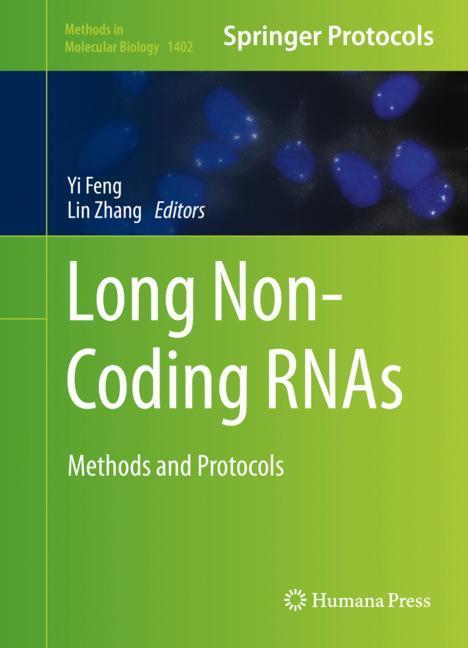 Cover of 'Long Non-Coding RNAs'