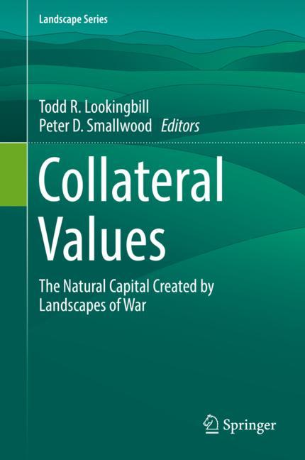 Cover of 'Collateral Values'