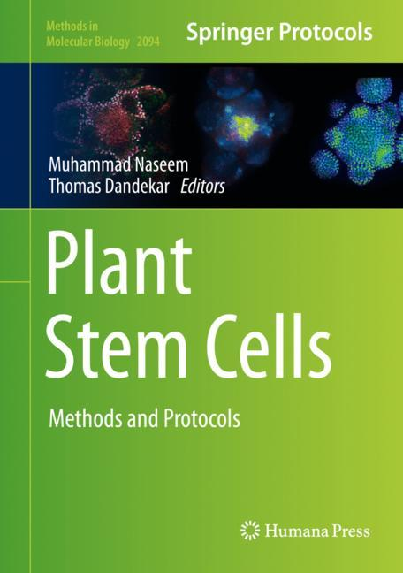 Cover of 'Plant Stem Cells'