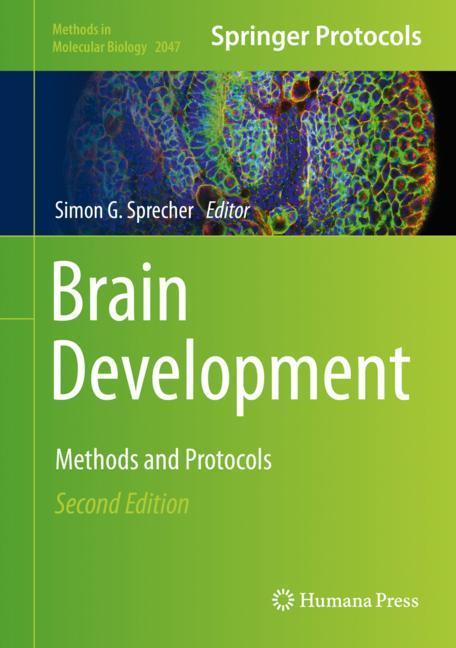 Cover of 'Brain Development'
