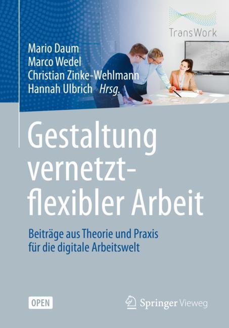 Cover of 'Gestaltung vernetzt-flexibler Arbeit'