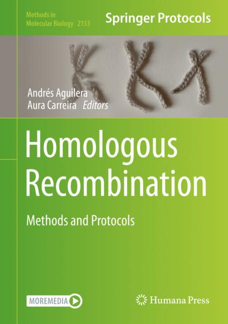 Cover of 'Homologous Recombination'