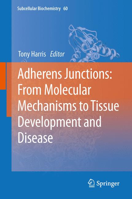 Cover of 'Adherens Junctions: from Molecular Mechanisms to Tissue Development and Disease'