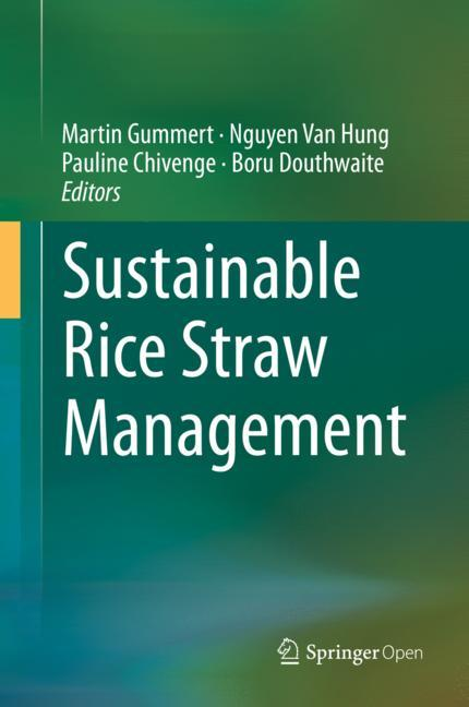 Cover of 'Sustainable Rice Straw Management'