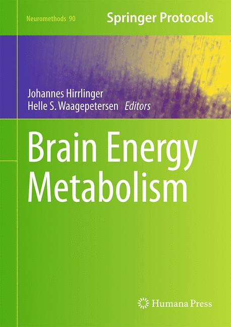 Cover of 'Brain Energy Metabolism'