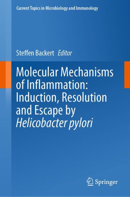 Cover of 'Molecular Mechanisms of Inflammation: Induction, Resolution and Escape by Helicobacter pylori'
