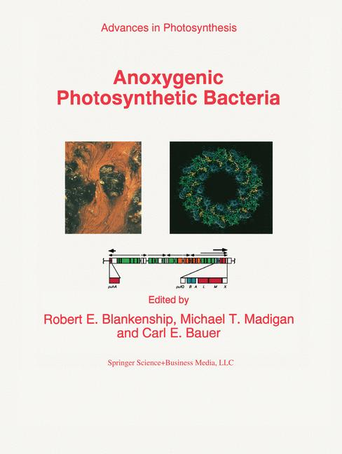 Cover of 'Anoxygenic Photosynthetic Bacteria'