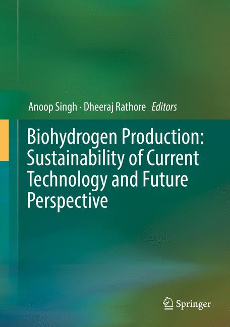 Cover of 'Biohydrogen Production: Sustainability of Current Technology and Future Perspective'
