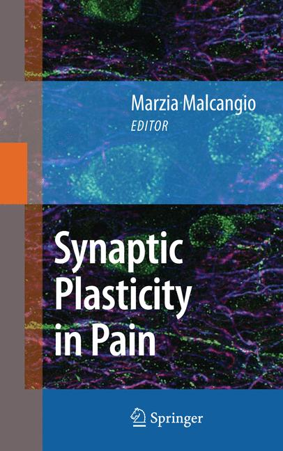 Cover of 'Synaptic Plasticity in Pain'