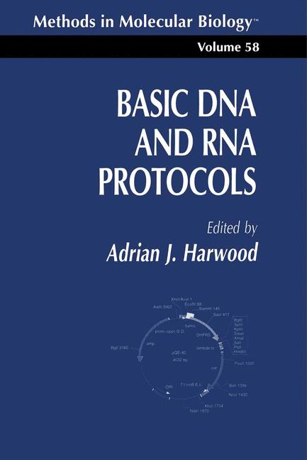 Cover of 'Basic DNA and RNA Protocols'