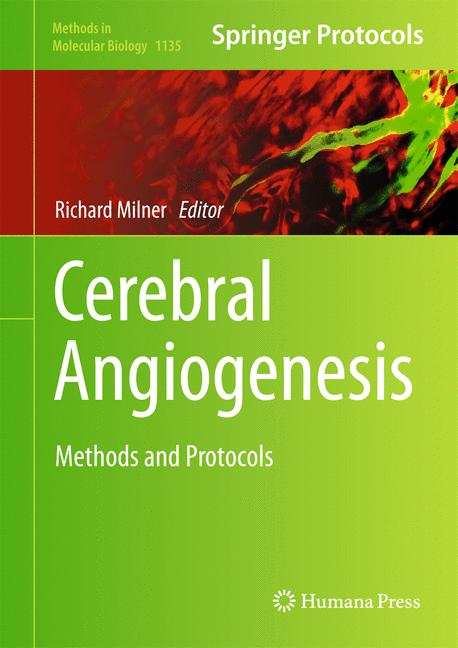 Cover of 'Cerebral Angiogenesis'