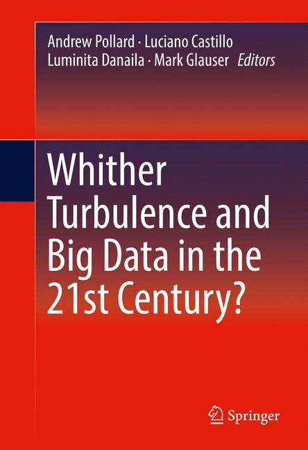 Cover of 'Whither Turbulence and Big Data in the 21st Century?'