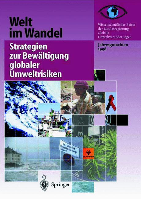 Cover of 'Welt im Wandel: Strategien zur Bewältigung globaler Umweltrisiken'