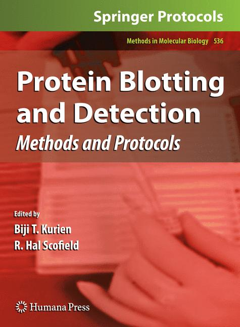 Cover of 'Protein Blotting and Detection'