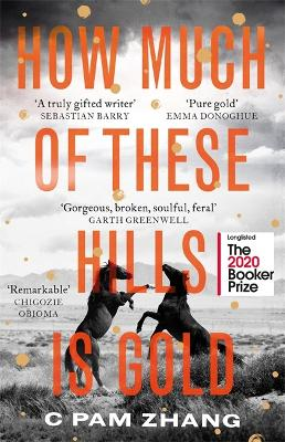 How Much of These Hills is Gold: 'The boldest debut of the year' Observer by C Pam Zhang