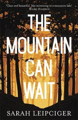 The Mountain Can Wait by Sarah Leipciger