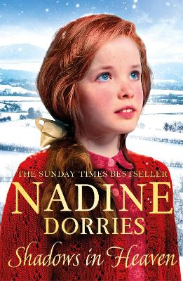 Shadows in Heaven: A gritty family drama from the Sunday Times bestseller by Nadine Dorries