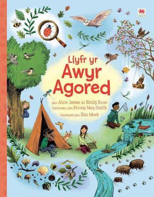 Llyfr yr Awyr Agored