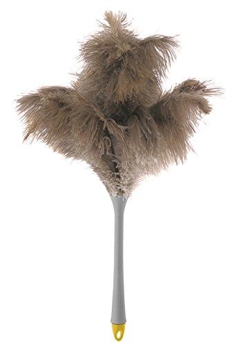 Apex 30125AM–Piumino cattura polvere piume di struzzo