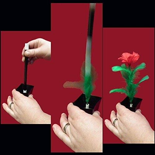 apparizione fiore da vasetto,giochi di prestigio,trucchi magia