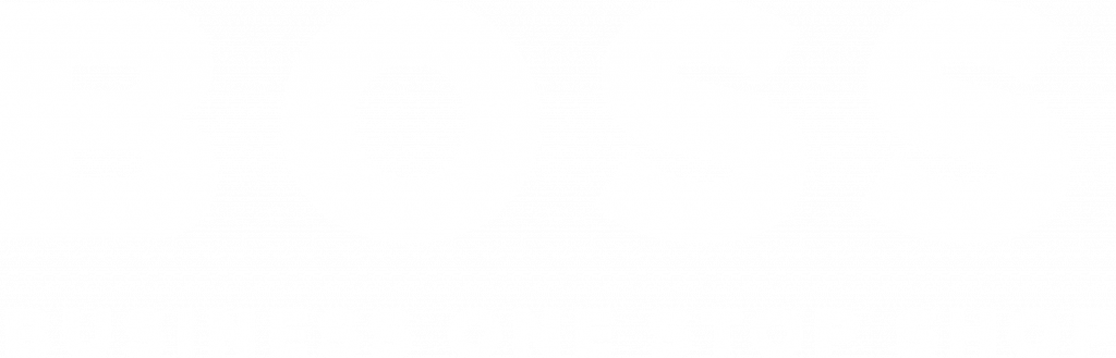 BOSS – Business One Stop Shop