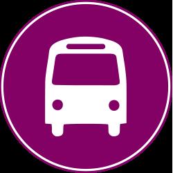 BMF Marathon Shuttle Bus