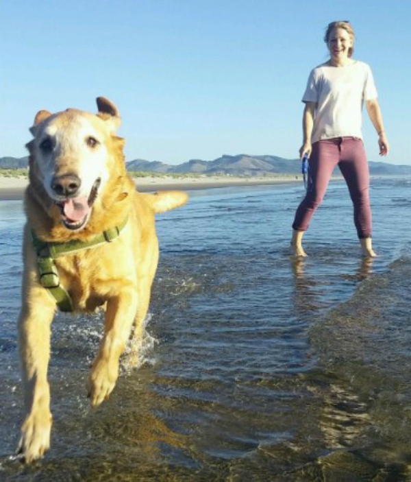 Terminally Ill Dog Gets One Last Dream Day Out At His Humans Beach Wedding BowWow Times Dood Running