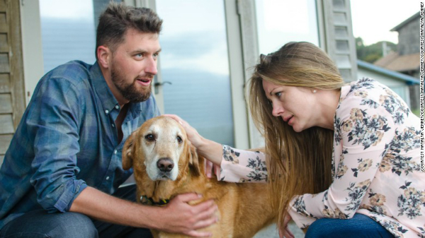 Terminally Ill Dog Gets One Last Dream Day Out At His Humans Beach Wedding BowWow Times