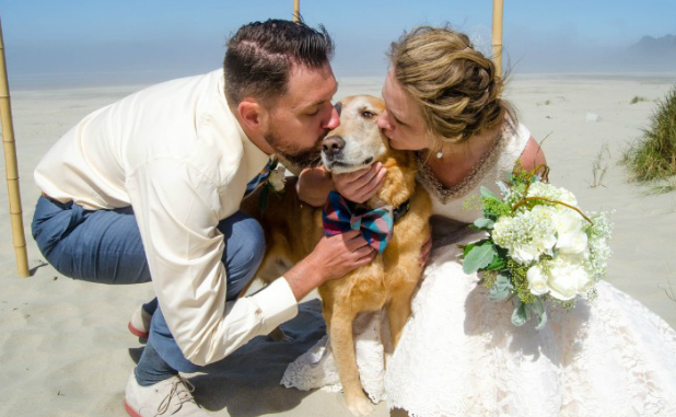 featwedding150824173029-01-dog-terminal-cancer-wedding-exlarge-169-618x381 Terminally Ill Dog Gets One Last Dream Day Out At His Humans Beach Wedding BowWow Times