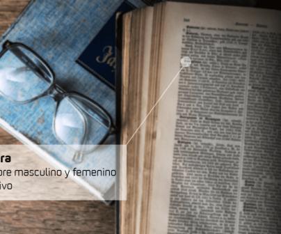 Detalle diccionario motero