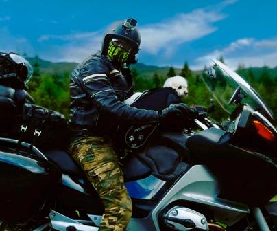 Como llevar a tu mascota en moto