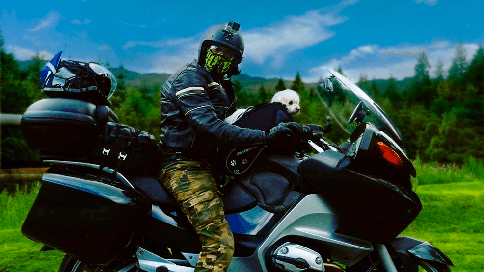 ¿Cómo llevar a tu mascota en moto?