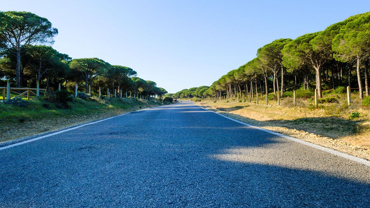 Parque natural de la Breña y las marismas de Barbate