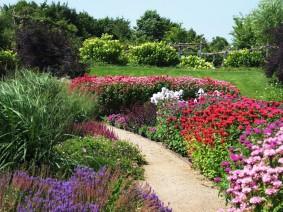 Dagtocht Tin en tuinen