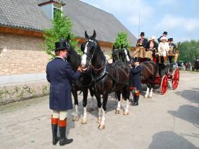 Dagtocht Koets en paard (verkort)