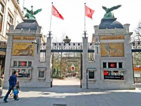 Schoolreis ZOO Antwerpen Basisschool