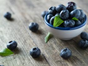 busreis blue berrie hill