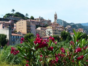 Busreis bloemenriviera italie