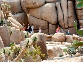 schoolreis burgers zoo