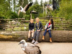 Schoolreis Dierenpark Amersfoort