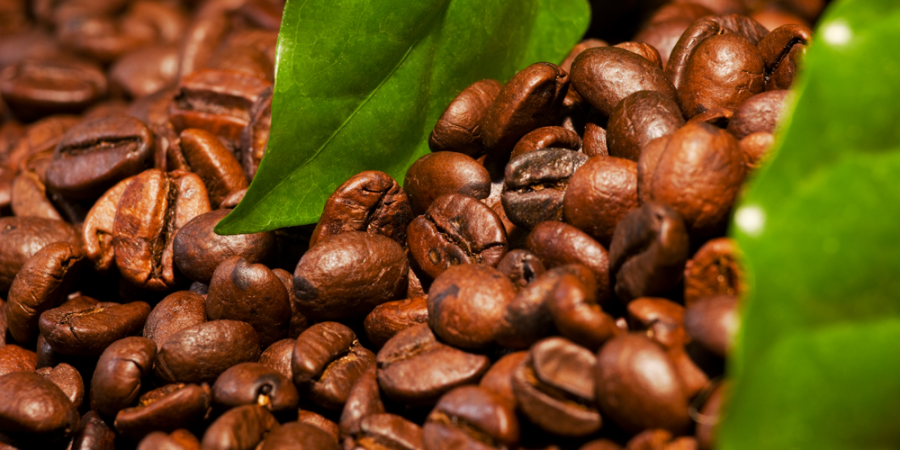 You've Been Drinking Burnt Coffee Your Whole Life: Here's Why