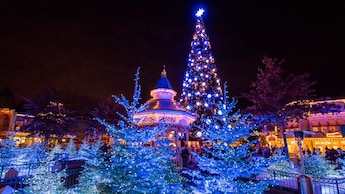 When Does Disneyland Decorate For Christmas.Disneyland Paris Christmas Season Low Prices Book With