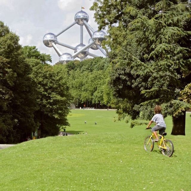 Admire the green side of Brussels