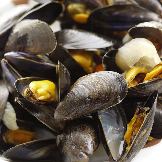 Musings on mussels