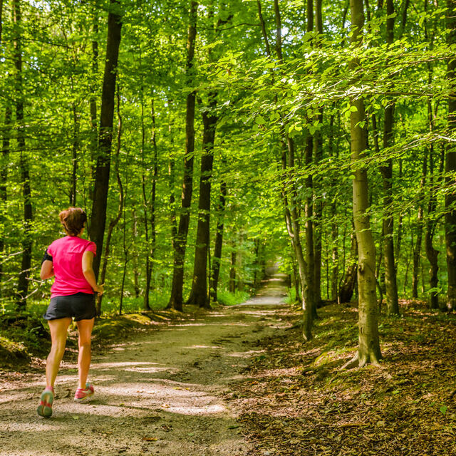 The most beautiful running routes in Brussels
