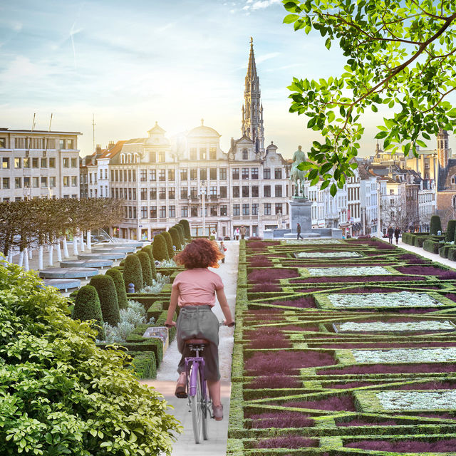 Discover Brussels by bicycle