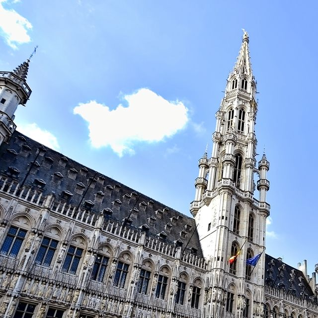 Inner rooms of the Town Hall of Brussels